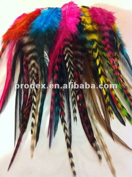 color dyed chinchilla grizzly feathers