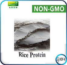 2016 New Non-GMO Certified Organic Whole Rice Protein for Protein Supplement