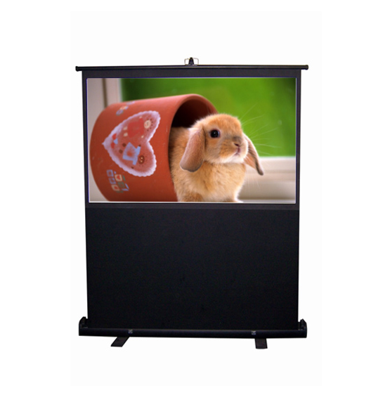 Manual Roll up Projection Screen Floor Stand Portable Travel Projector Screen