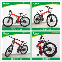 Gaea high quality magnetic electric bicycle motor 250W elektro bike for sale