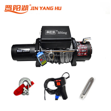 12v 12000lbs wire rope car electric winch for sale