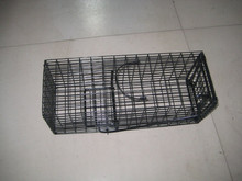 Hote sale metal bird cage/Group of bird cage, cage breeding