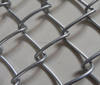 Professional factory supply galvanized garden decorative chain link fence made in china