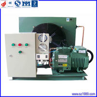 cold storage room Air-cooled Bitzer refrigeration compressor condensing unit for chicken