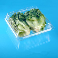 Disposable Plastic Lettuce, mushroom packing punnet with vent hole