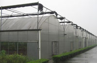 Poly high tunnel greenhouse