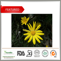 Best quality Arnica Montana Extract, Best price Arnica Montana Extract powder