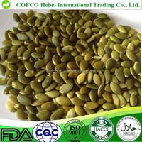 AA grade pumpkin seeds kernel for bakery