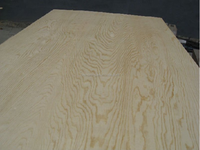 pine Plywood With two times Hot Press