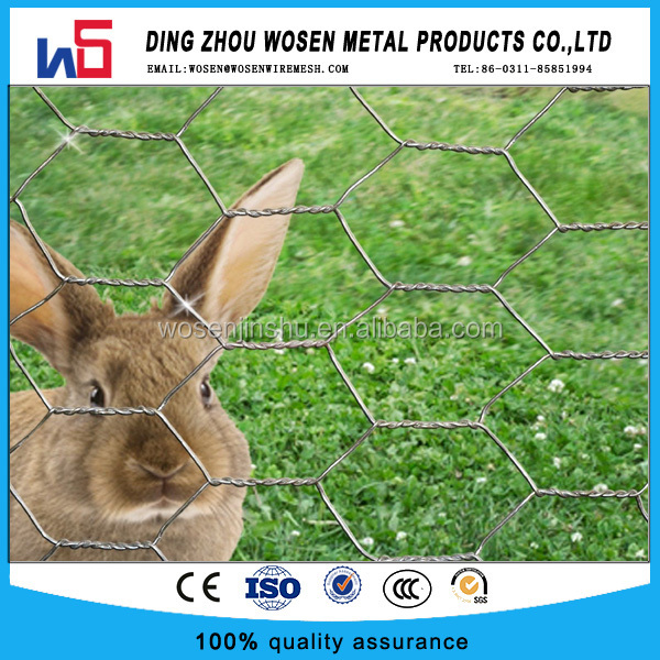 Green PVC Chicken Wire Netting Fencing Coop Aviary Rabbit Hutches Various Sizes