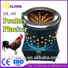 CE Certification Capacity 10-12 chicken per min DL-60 chicken plucker for sale