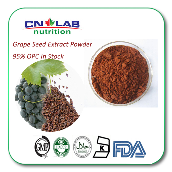Procyanidins 95 Price Extract Grape Seed