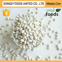 Exporter Business Opportunities White Kidney Beans
