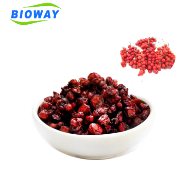 Free sample High purity organic Schisandra Berry