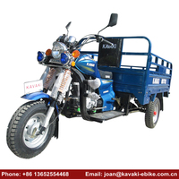 Lifan 200cc 250cc Air Cool Motorized Big Wheel Cargo Tricycle Motor Trike Gas Powered Adult Tricycle Motorcycle