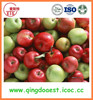 chinese sweet juicy fruits red gala apple