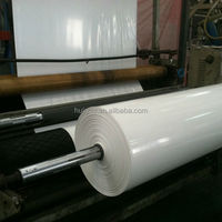 PE Scaffolding Film Environment Protect Construction