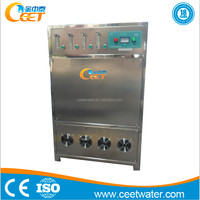 Oxygen Feed Ionic water Purifier Ozone Ionizer Fresh Clean water Sterilizer for asthma Factory Office Dust