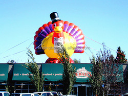 NB2-CT59 inflatable Turkey for advertising