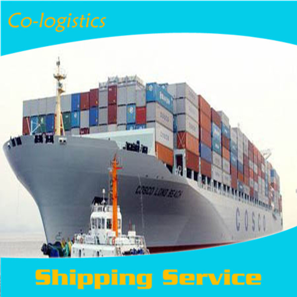 transport and logistics sea freight from China to Niger by sea, LCL -- derek skype:colsales30