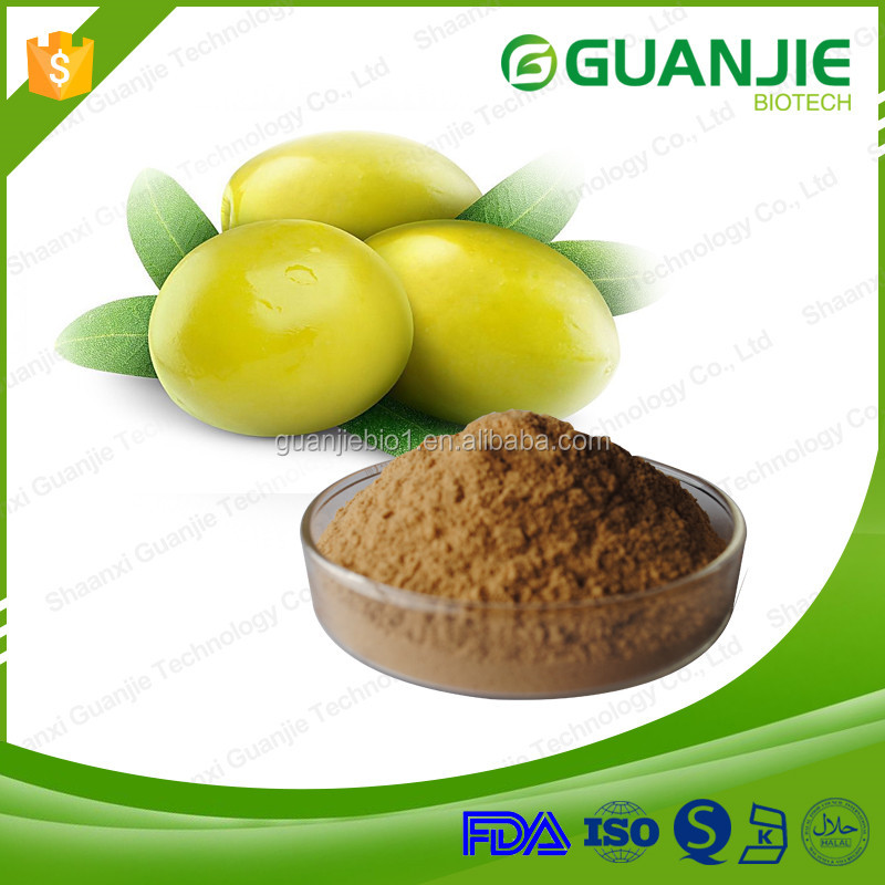 Supply high quality free sample 100% natural Olive Leaf Extract Oleuropein 25% Oliver Extract