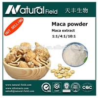 Strong guarantee for production health function the benefits of maca powder