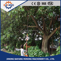 2 Stroke Petrol Engine Tree Pruning Long Pole Gasoline Chain Saw Wooden Cutting Machine