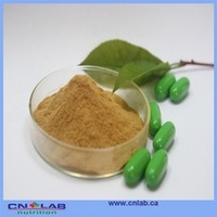 stinging nettle powder,nettle root extract,nettle leaf