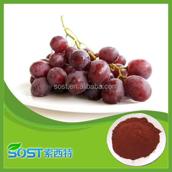 Alibaba Chinese manufacturer supply high quality organic grape seed extract in stock