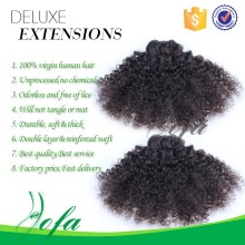 Wholesale fast shipping short kinky curly afro brazilian human hair weave for black women