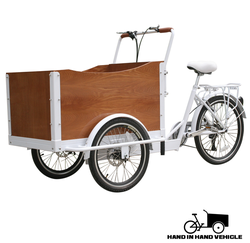 hot sale pedal electric cargo bike/tricycle cargo bike for sale