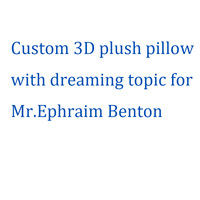 Custom 3D plush pillow with dreaming topic