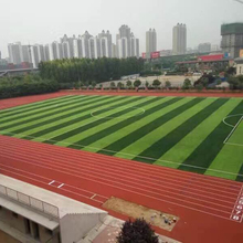 IAAF Approved Full PU Stadium Synthetic Rubber Running Race Track