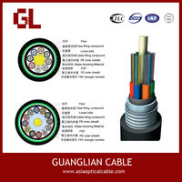 outdoor sm 24 fiber direct buried duct optic cable GYTY
