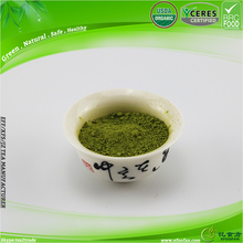 Green Tea Benefits Maccha Diet Tee Premium Matcha