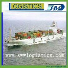 professional shipping company in china to DUBAI