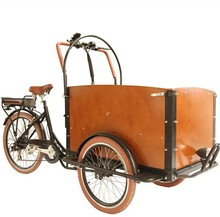 bakfiets family 3 wheel electric cargo bicycle triporteur made in China