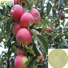 2014 Factory direct sales organic apple juice powder