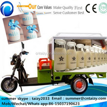 Ice Cream/Milk/Fruit /sea food 250CC Freezer Motocycles with 3 Wheels