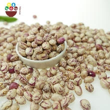 Chinese wholesale light speckled kidney beans sugar bean pinto bean for sale