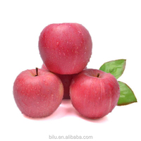 Top Apple Fruit Market Price Fresh Red Delicious Qinguan Apple