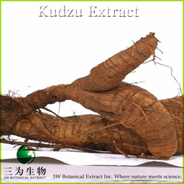 100% Pure Pueraria mirifica Extract from 3W Botanical