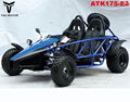 Tao Motor Adults Racing Go Kart for sale ATK175-E2 with CE ECE