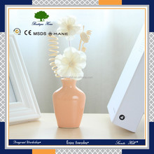 Home air freshener use room /office fragrance reed diffuser gift set