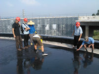 High Elastic Single Component Polyurethane Waterproof Coating for Building Roof