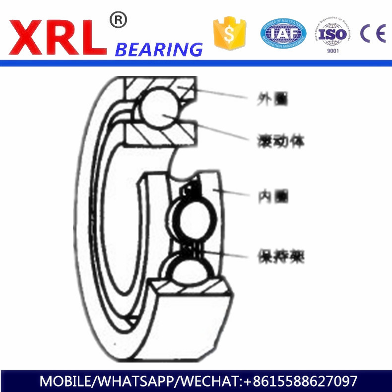 professional global export rubber seal deep groove ball bearing 203