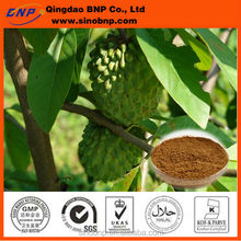 Buys top quality and Natural Graviola Soursop Extract Powder guanabana