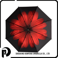 Profession Manufacturer Various Color Folding Clear Umbrella