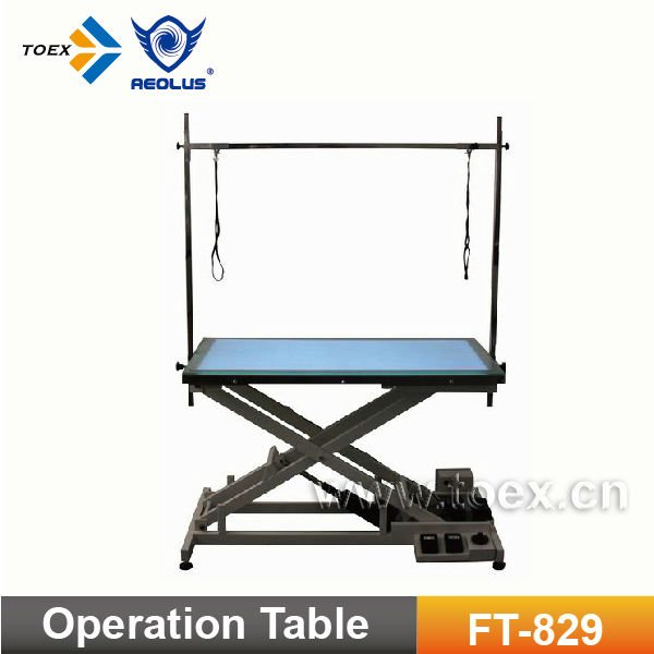 Electric Pet Operation Table Grooming Table with Light FT-829