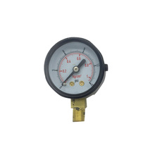 Black Steel Case Liquid Glycerin Filled Mechanical Pressure Gauge with Bottom Mounting 2 inches